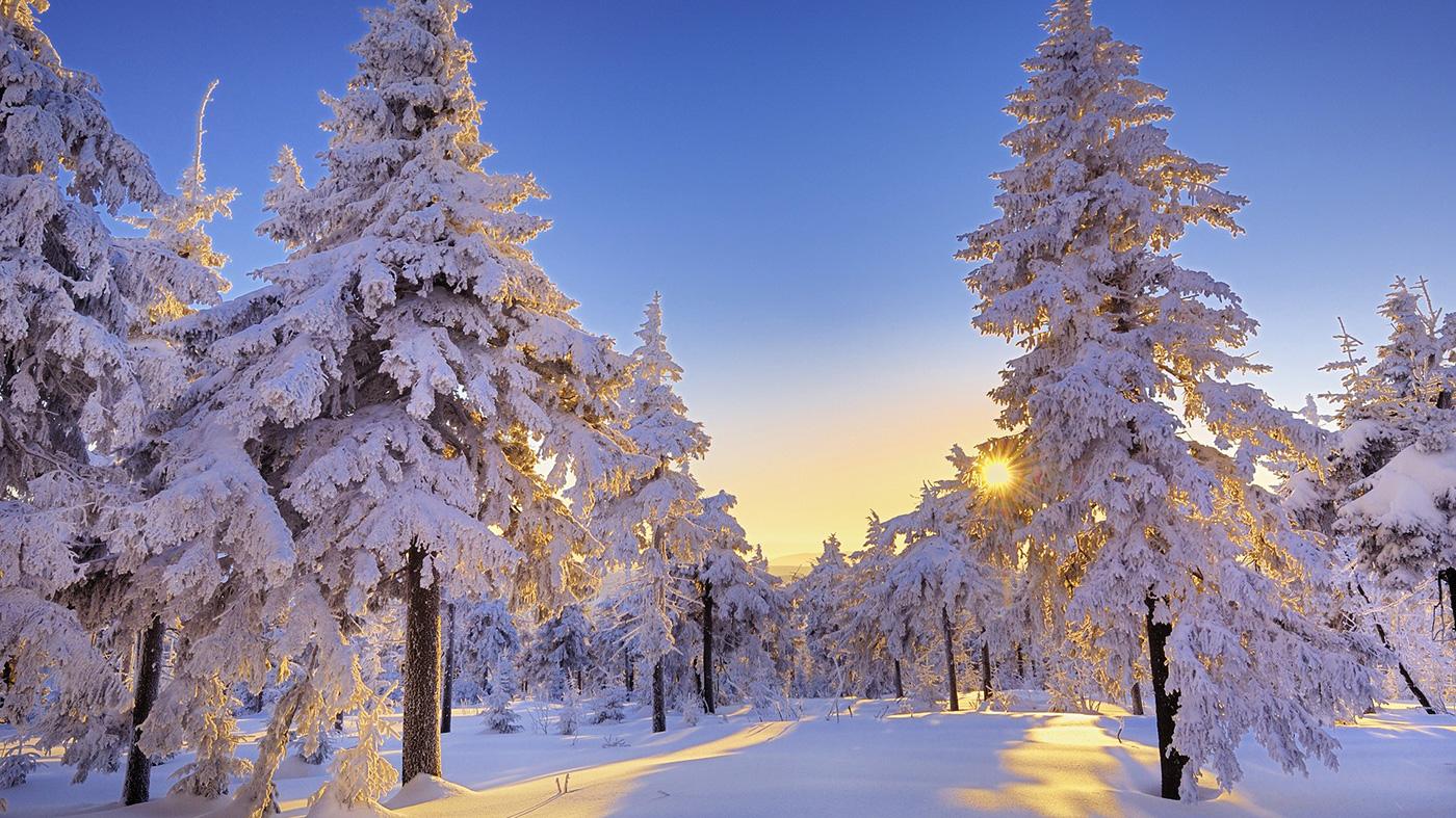 стихи о уходящей зиме